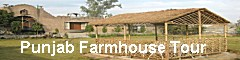 Punjab Farmhouse, Punjab Farmhouse Tour, Punjab Farmhouse Stay