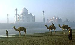 Taj Mahal Tours, Taj Mahal Tour Packages, Taj Mahal Agra Tours,  Delhi Taj Mahal Tours, Delhi Agra Tours